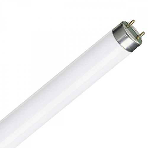 T8 or G13 Fluorescent Tubes