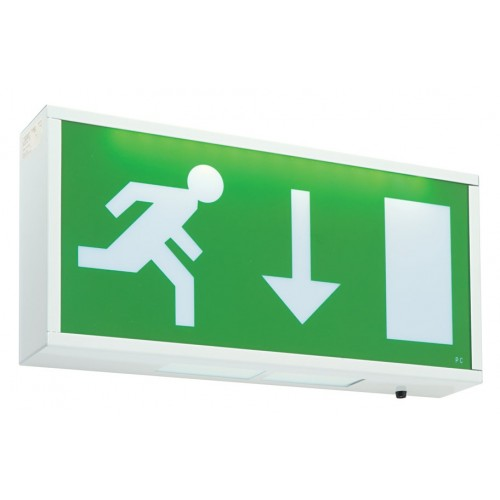 Emergency Lights - Maintained Exit Box