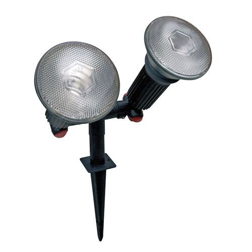 Twin PAR 38 Spike lights