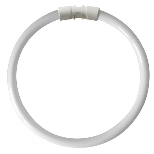 Kosnic CFL 22 W Circular T5 Lamp, 4 pin