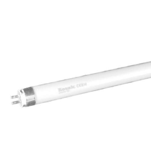 Kosnic CFL 24 W T5 Lamp (High Output)